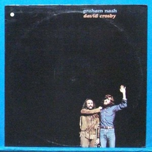Graham Nash & David Crosby (미국 초반)
